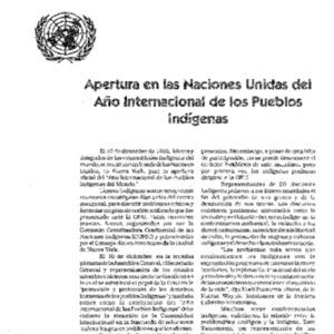 Apertura en las Naciones Unidas del Ano Internacional de los Pueblos Indigenas
