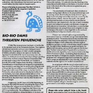 Bio-Bio Dams Threaten Pehuenche