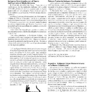 Primera Fundacion Indigena Continental