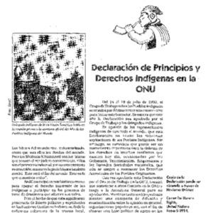 Declaracion de Principios y Derechos Indigenas en la ONU