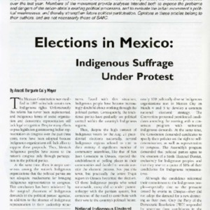 Elections in Mexico: Indigenous Suffrage Under Protest